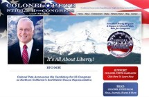Congressional Campaign Website & Graphic Design