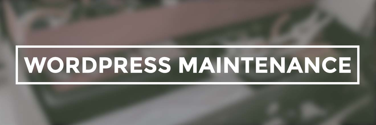 WordPress website maintenance basics